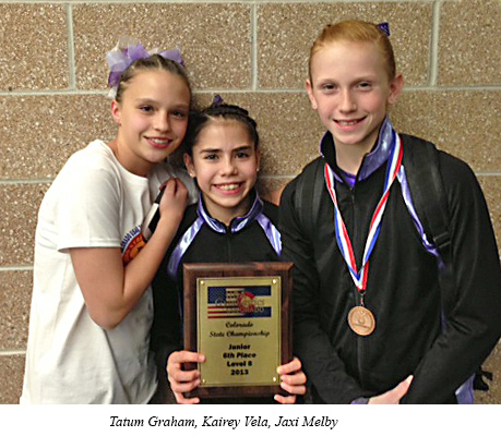 2013 level 8 state junior team placing 6th 1 Premier Gymnastics results for Colorado Championship