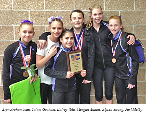 2013 level 8 state team placing 7th out of 27 Premier Gymnastics results for Colorado Championship