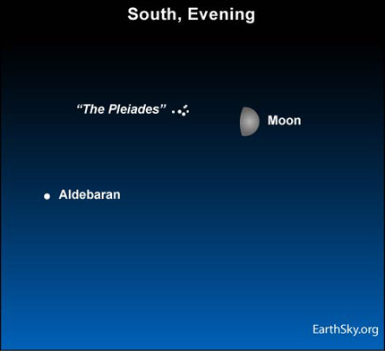 10jan24 430 Earthsky Tonight  January 24: Moon and Pleiades in south at nightfall