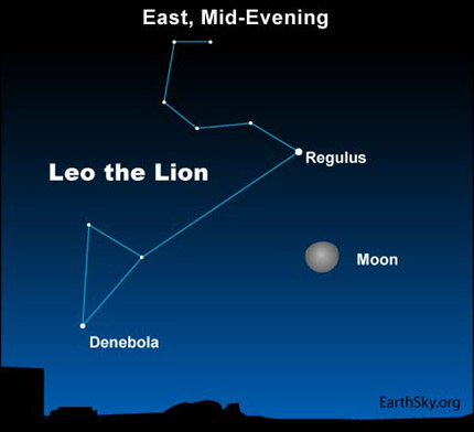 10jan31 430 Earthsky Tonight, January 31, 2010: Watch for Leo the Lion, harbinger of spring