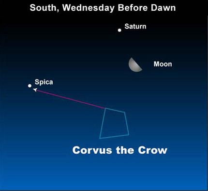 EarthSky 10jan05 430 Earthsky Tonight   January 5, 2010: Moon and Saturn