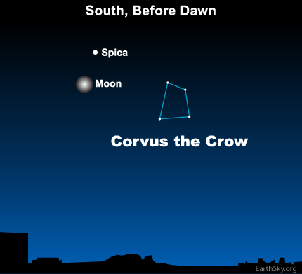10mar02 430 Earthsky Tonight — March 2, 2010: Moon still near Saturn, closer to Spica on March 2