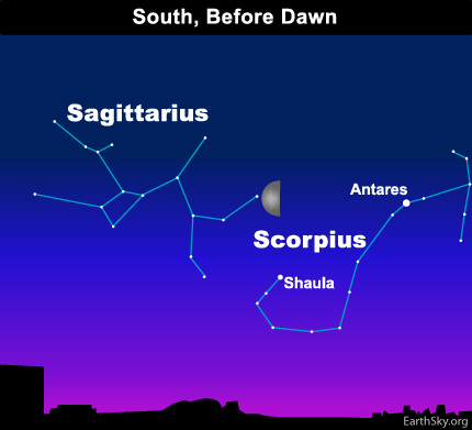10mar07 430 Earthsky Tonight — March 7, 2010: Predawn moon points out Scorpions Stinger