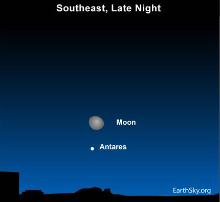 10apr02 430 Earthsky Tonight  April 2, 2010: Moon and Scorpius rise after Orion sets 