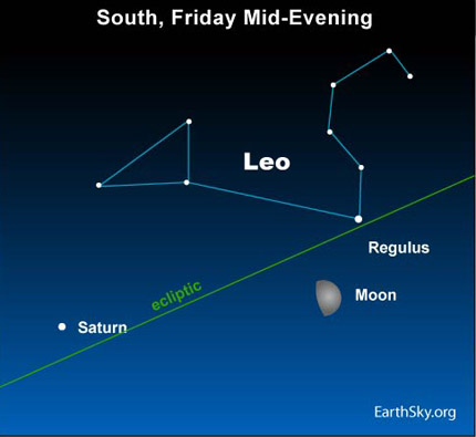 10apr23 430 Earthsky Tonight — April 23, Waxing gibbous moon near Regulus