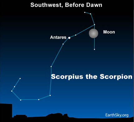 10apr29 430 Earthsky Tonight—April 29, Moon and Scorpion rise as Orion sets