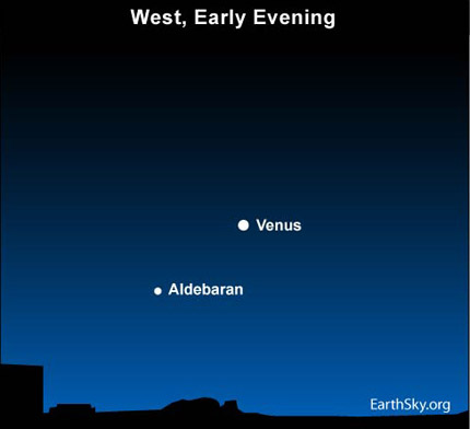 10may03 430 Earthsky Tonight —May 3, Can you see Aldebaran near Venus?