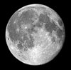 Moon 14 phases Earthsky Tonight — April 28, Orion descends in the west each evening