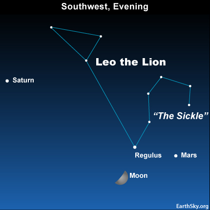 10may20 4302 Earthsky Tonight—May 20, First quarter moon – or 'half moon' – near Regulus and Mars