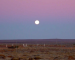 Earthsky TonightMay 26:  Earth shadow, Belt of Venus in east after sunset