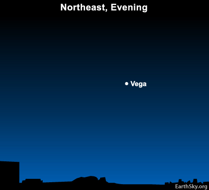 10may28 430 Earthsky Tonight—May 28:  Look for Vega in the northeast in springtime