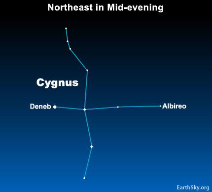 10may30 430 May 30:  Star Deneb belongs to a cross like star pattern