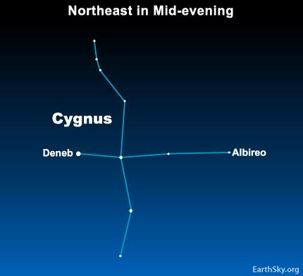 10may30 430 May 30:  Star Deneb belongs to a cross like star pattern