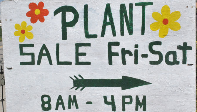 Sale sign Buy a plant, help a child