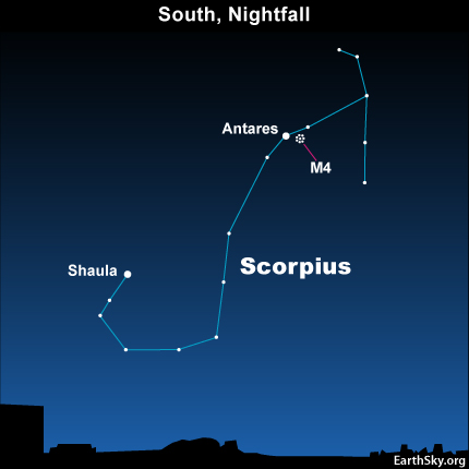 10aug02 430 Earthsky TonightAugust 2, Find a globular cluster by the Scorpions heart
