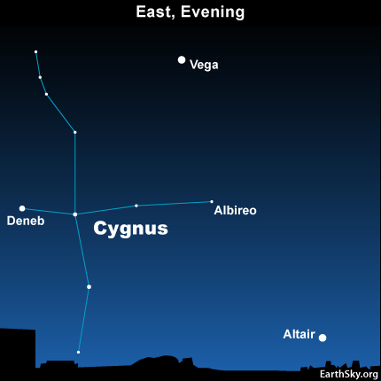 10jul16 430 Earthsky Tonight—July 16, Summer Triangle: Deneb and Cygnus the Swan