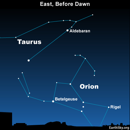 10jul31 430 Earthsky TonightJuly 31, Orion the Hunter: ghost of the summer dawn