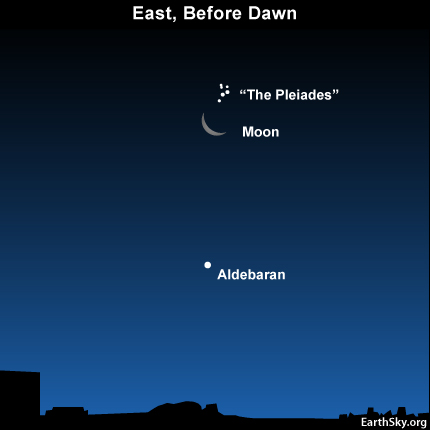 10july07 430 Earthsky Tonight—July 7, 2010: The moon will pass the Pleiades before dawn July 8