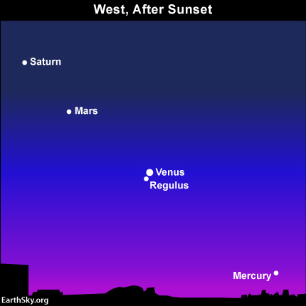 10july09 430 Earthsky Tonight—July 9, 2010: Venus and Regulus in conjunction