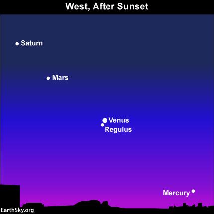 10july09 430 Earthsky Tonight—July 9, 2010: Venus and Regulus in conjunction