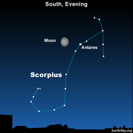 10july21 430 Earthsky Tonight—July 21,Moon and Antares even closer today