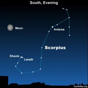 10july22 430 300x300 Earthsky Tonight—July 22, Shaula and Lesath near the moon