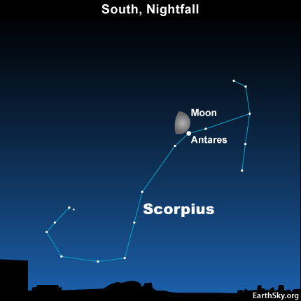 10aug17 430 EarthSky Tonight—August 17, Antares – Fire Star – near moon