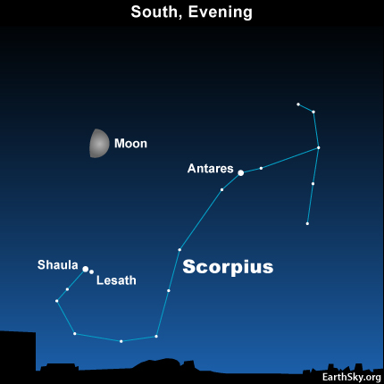 10aug18 430 EarthSky Tonight—August 18, Moon shines above Scorpion's stinger