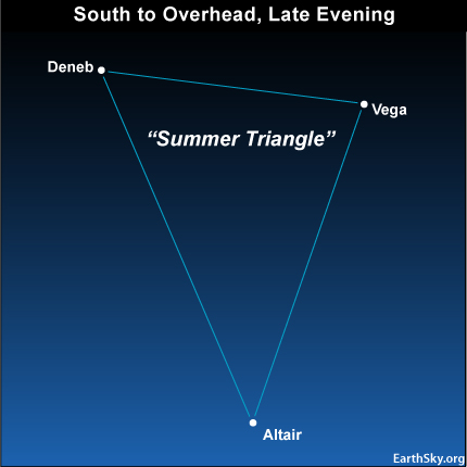 10aug21 4301 EarthSky Tonight—August 21,  Summer Triangle high overhead on summer evenings