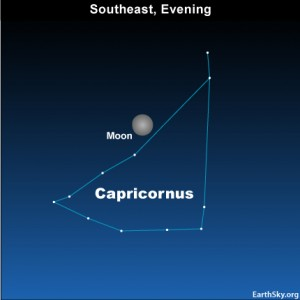 10aug22 4302 300x300 EarthSky Tonight—August 22, Almost full moon lights up Capricornus