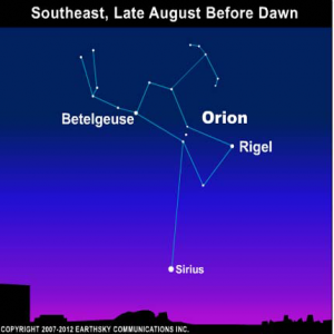 10aug25 430 300x300 EarthSky TonightAugust 25, Orion the Hunter and Sirius the Dog Star 