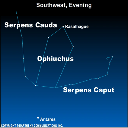 10aug28 430 EarthSky Tonight—August 28, Ophiuchus is part of the Zodiac, too