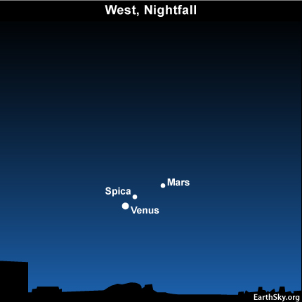 10sept01 430 EarthSky Tonight—September 1,  Venus, Mars, Spica meet in west after sunset early September