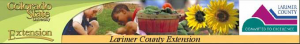 Larimer County Extension service.new  300x44 Larimer County Extension service.new