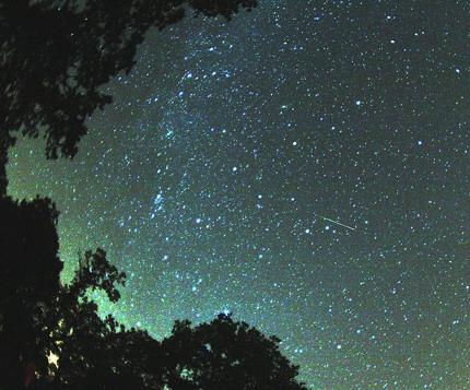 perseidmeteor Earthsky Tonight—August 12, Moon and Venus in evening, 2010 Perseid meteors before dawn
