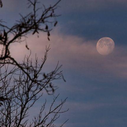 10sep25 4301 EarthSky Tonight—September 25, Look for daytime moon after sunrise September 25 28