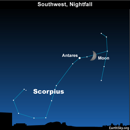 10sept13 4301 EarthSky Tonight—September 13, Waxing moon near Scorpion's Heart