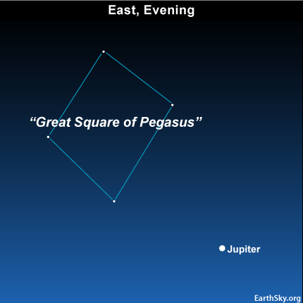 10oct02 430 EarthSky Tonight—Oct 2,  Jupiter is a guide to Great Square