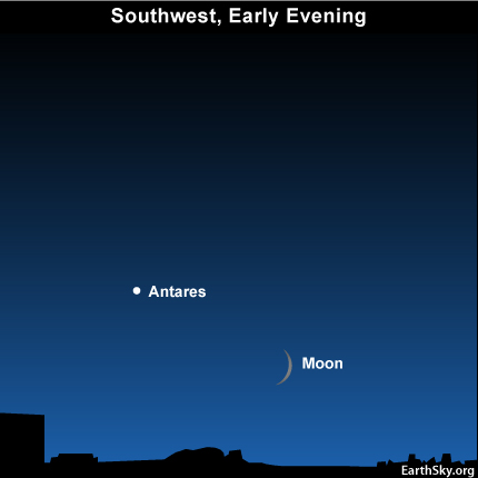 10oct10 430 EarthSky TonightOctober 10,  Bright star near moon is red Antares 