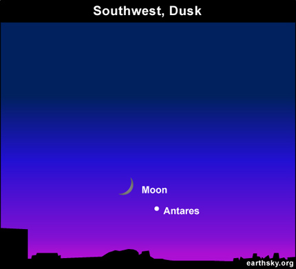 10oct11 430 EarthSky Tonight October 11,  Antares is bright star near moon in early evening