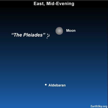 10oct24 430 EarthSky Tonight—October 24, Moon can guide you to Pleiades star cluster