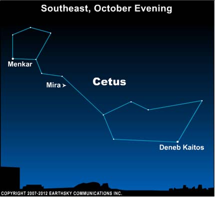10oct28 430 EarthSky Tonight—Oct. 28, Mira the Wonderful, a famous variable star