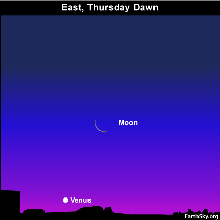 10nov03 430 EarthSky TonightNov 3, Crescent moon, planet Venus in glow of dawn November 4 