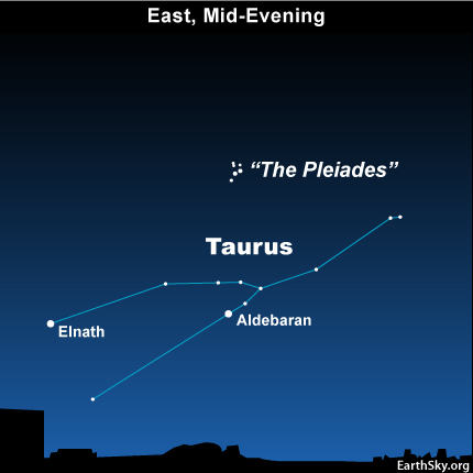 10nov04 430 EarthSky Tonight—Nov 4, Modest meteor shower tonight. Moon and Venus before dawn tomorrow.