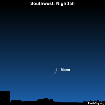 10nov08 430 EarthSky Tonight—Nov 8, Young moon easier to spot after sunset on November 8