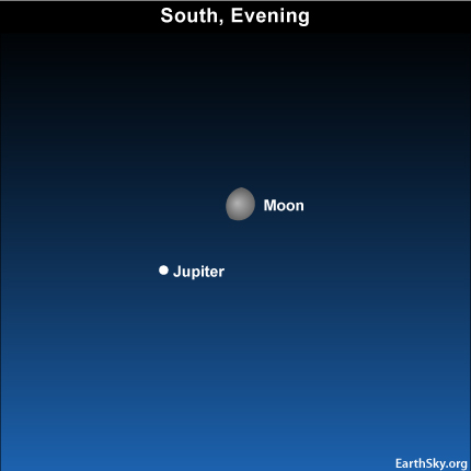 10nov15 430 EarthSky Tonight—Nov 15, Waxing moon close to Jupiter