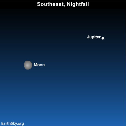 10nov18 430 EarthSky Tonight—Nov 18, Moon and Jupiter tonight, Venus rises before dawn
