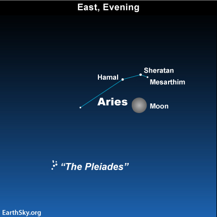10nov19 430 EarthSky Tonight—Nov 19, Moon in front of Aries the Ram