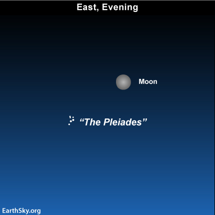 10nov20 430 EarthSky Tonight—Nov 20, Nearly full moon near famous Pleaides star cluster
