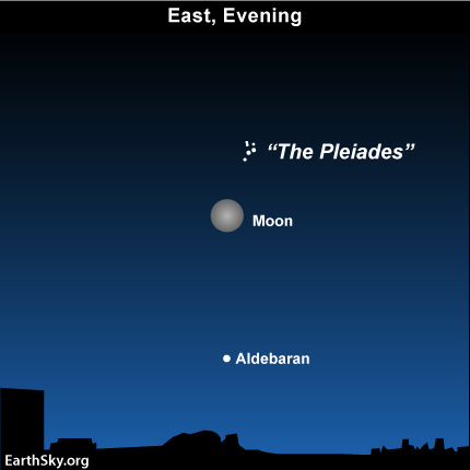 10nov21 430 EarthSky Tonight—Nov 21,  Watch for Blue Moon near Pleiades